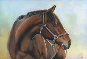 auction horse by classina