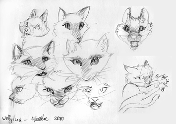 Four Brothers- face-sketches by Illys
