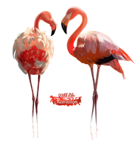 Pink Flamingo watercolor illustration by Kajenna