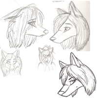 Anthro heads by amrhorselvr