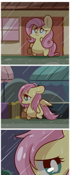 Rainy Day by MACKINN7