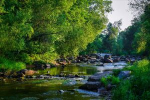 Where the River flows IV by Aenea-Jones