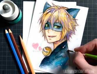 Chat Noir - Miraculous Ladybug by Laovaan