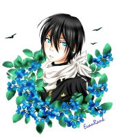 Yato - Blueberry eyes by EvanRank