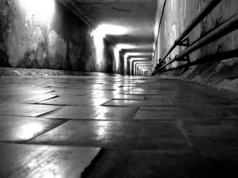 claustrophobic path by rytisgervickas