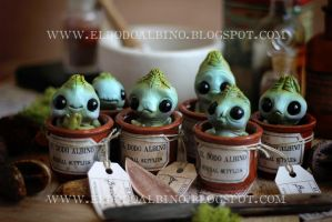 Cabbage mandrake sprouts by dodoalbino