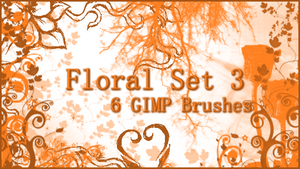 GIMP Floral Set 3 by Illyera