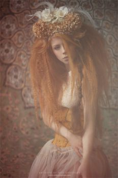 Lost in Lace by Ophelia-Overdose
