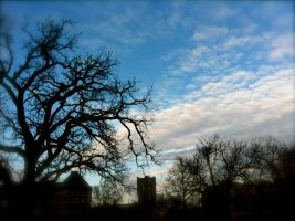 Late Afternoon Sky by ycrad64