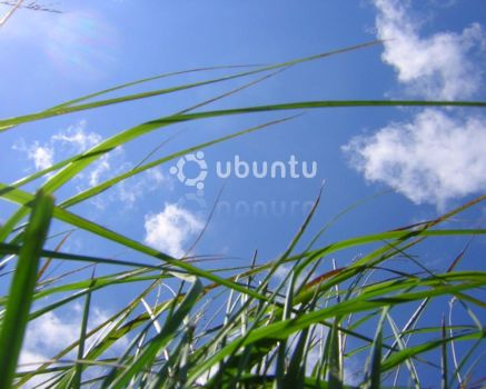 Ubuntu Grass by bagnaj97