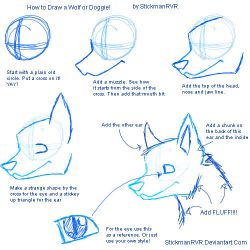 How to Draw a Wolf or a Doggie by StickmanRVR