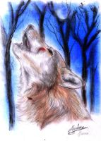 The last howling for hope by soulofsorrow