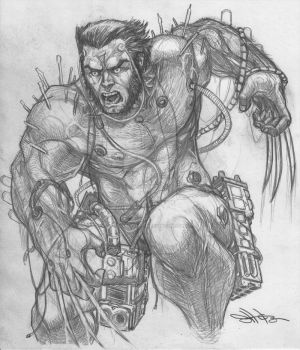 Wolverine WEAPON X by Dingodile24
