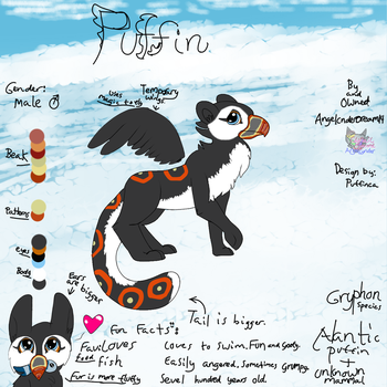Puffin Gryphon reference My new baby by AngelCnderDream14