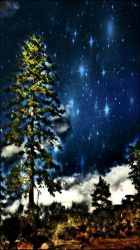 Tree In The Stars by Space0ctopus
