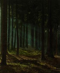 Light Rays in the Forest by MHandt