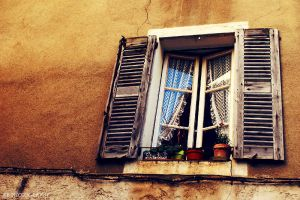 the window. by kamilla-b