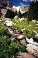 Bighorn Mountain Stream by salias
