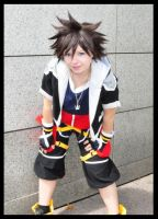 I am the hero - Kingdom Hearts II by JunAkera