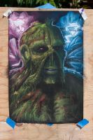 Swampthing by drastic77