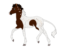 N3213 Padro Foal Design by casinuba