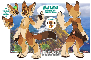 Malibu | REF 2017 by californiacoyote
