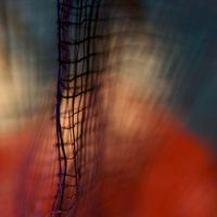 the net by m-lucia