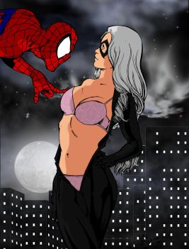 Spider-Man and Black Cat - Are Those Real by jmascia