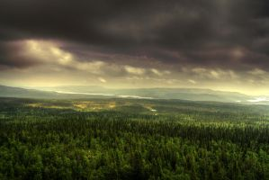 Nature always wears the colors of the spirit. by Azph
