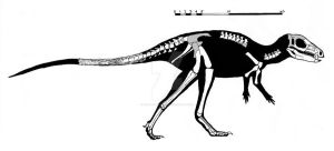 Tianyulong confuciusi skeletal reconstruction by ornithischophilia