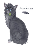 Goosefeather by Fily7