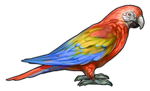 Scarlet Macaw Parrot Companion by TokoTime