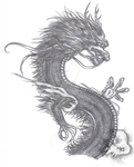 Asian Dragon Shaded