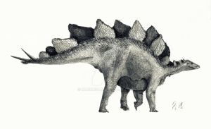 Stegosaurus stenops (outdated) by MarkM98