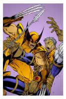 Wolverine v Cable by Rod Liefeld by DrDoom1081