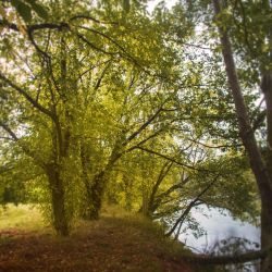 Autumn 2014 - The river 08 by HermitCrabStock