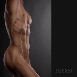 Nude by Torsal