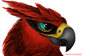 Semi-Realistic Talonflame! (MS Paint)