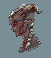 qunari inquisitor by kamidoodles