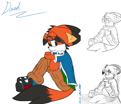 Dash - FanCharacter Example by OdysseyWestra