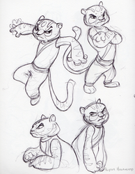 Tigress Sketches by little-ampharos