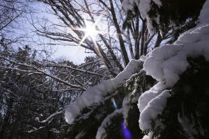The sun came to melt the snow by lorewith-na-athend