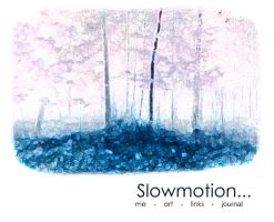 slowmotion vol cant remember by piraaja