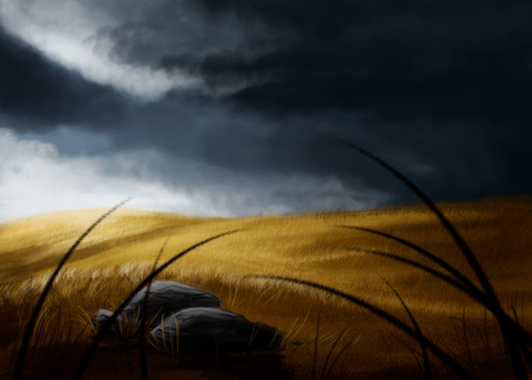 speedpaint/fields by heart-reactor