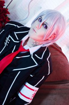 Vampire Knight by PriSuicun