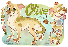 Olive Ref by Colonels-Corner