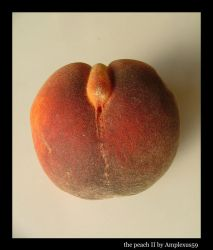 the peach II by Amplexus59