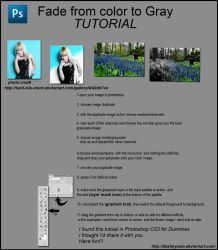 Fade - color to gray tutorial by tina1138