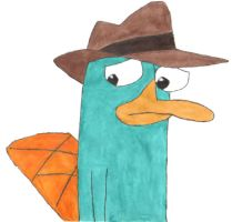 Perry the Platypus by smallhobbit