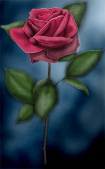 Rose Airbrushed by vendicator